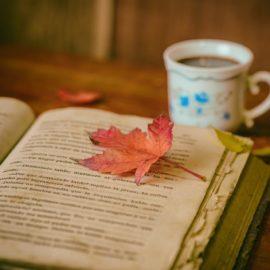 Am Anfang schreibt man für den Papierkorb – Das ELSA stellt junge Dichter vor